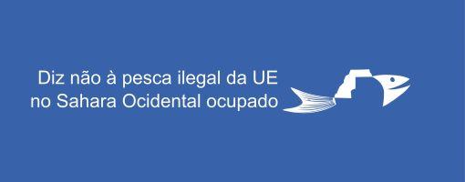 portuguese_petition_logo_rectangular.jpg