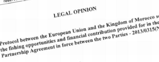 legal_opinion_510.jpg